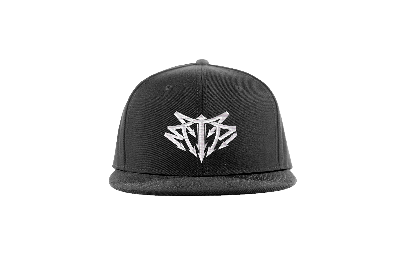 To The Point Records - Snapback Hat - Official 2016